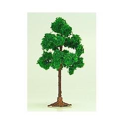 list.strom (malý)