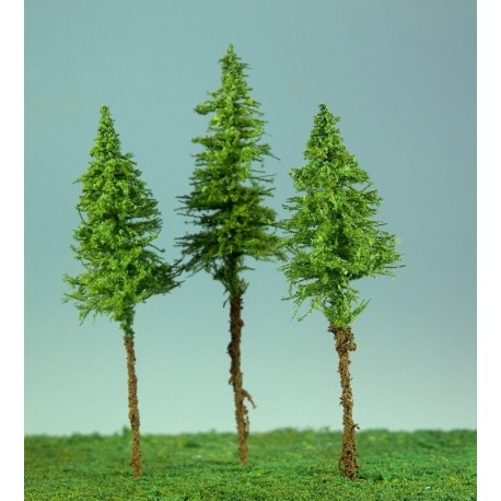 Jehličnatý strom sis - vyšší kmen (výška koruny cca 7cm)