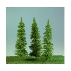 Jehličnatý strom Sis - výška cca 18 cm