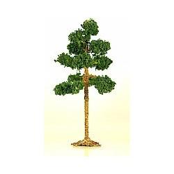 borovice (malá)