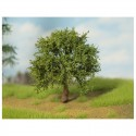 listnaté stromky - listoví